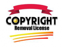 Copyright Removal for WordPress Theme