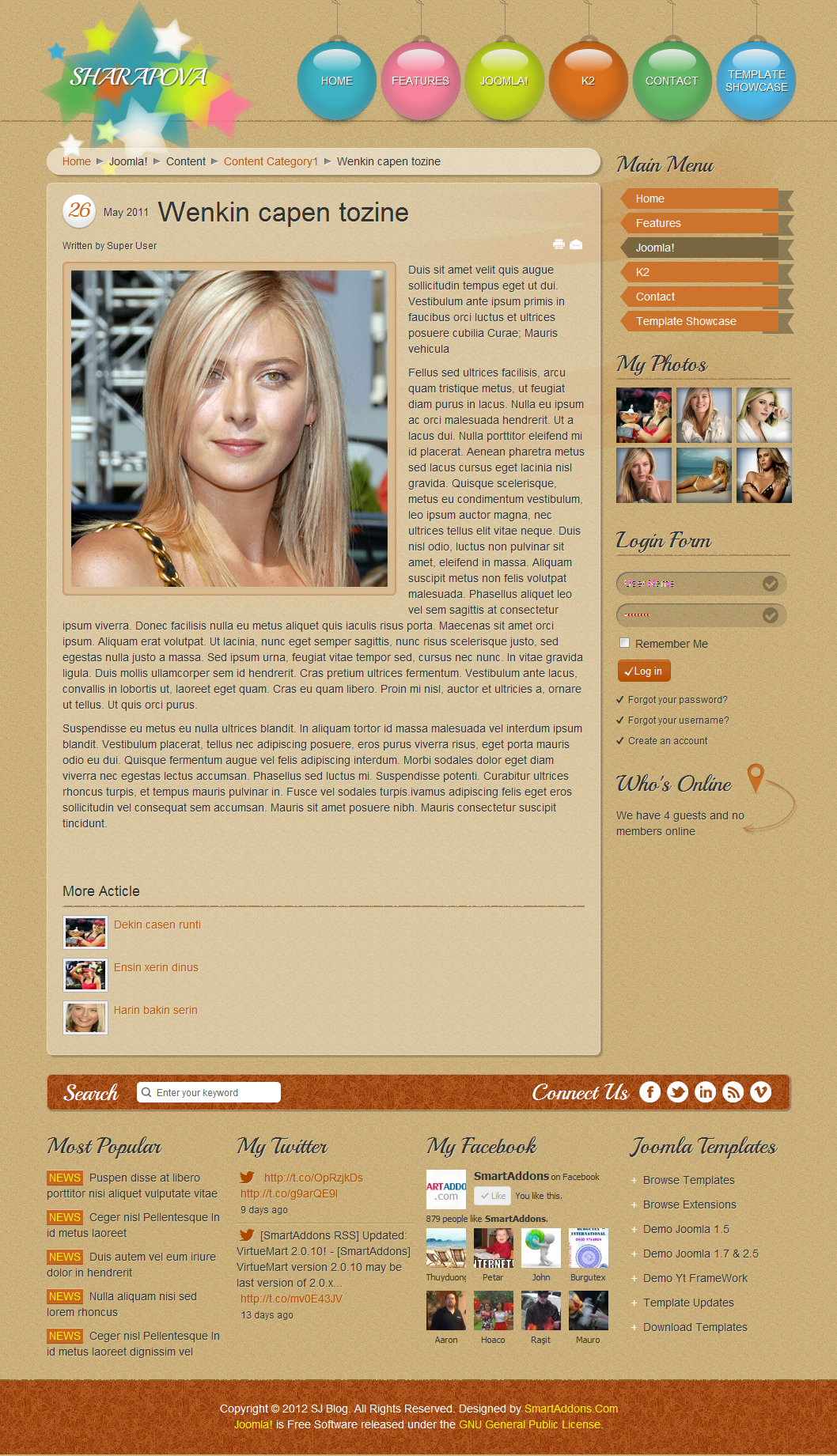 SJ Blog - Responsive Joomla blogs Template - 03joomdetail.png