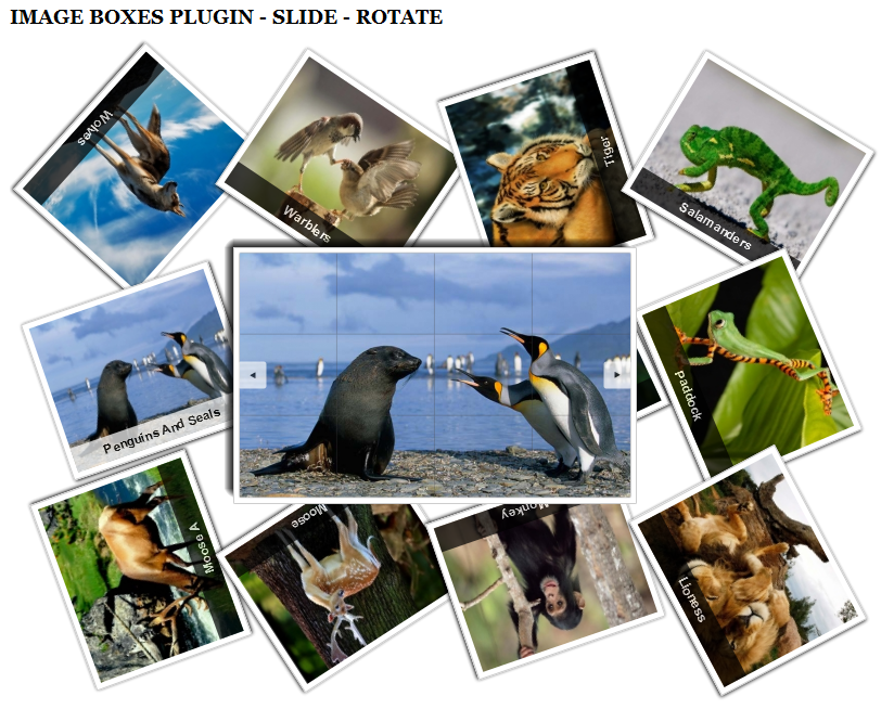 SJ Image Boxes - Joomla! Plugin - 1slide-rotate.png