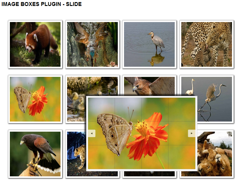 SJ Image Boxes - Joomla! Plugin - 2slide-no-rotate.png