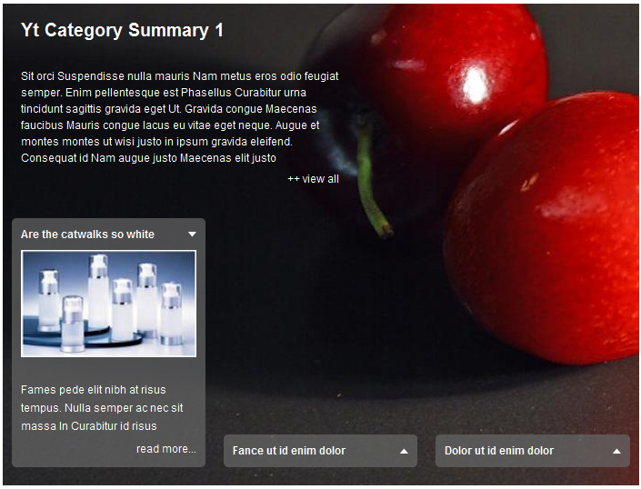 SJ Category Summary for Content - Joomla! Module - 1theme1.png