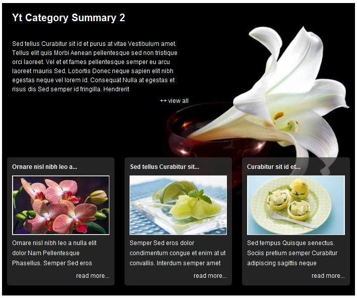 SJ Category Summary for Content - Joomla! Module - 2theme2.png
