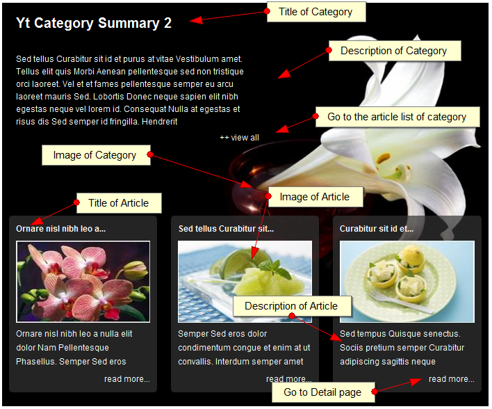 SJ Category Summary for Content - Joomla! Module - 4category_summarylayout.png