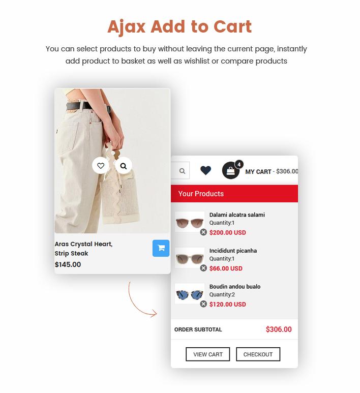 Ss RexStore - Multipurpose Swimwear & Lingerie Shopify Themes