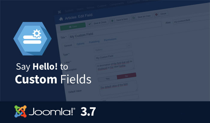 Joomla 37- customfields
