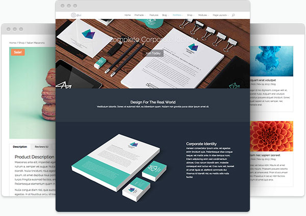 Divi - Top eCommerce Wordpress Theme