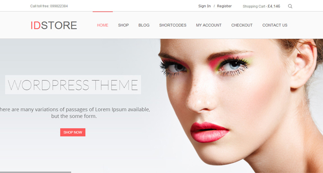 IDStore - Top eCommerce Wordpress Theme