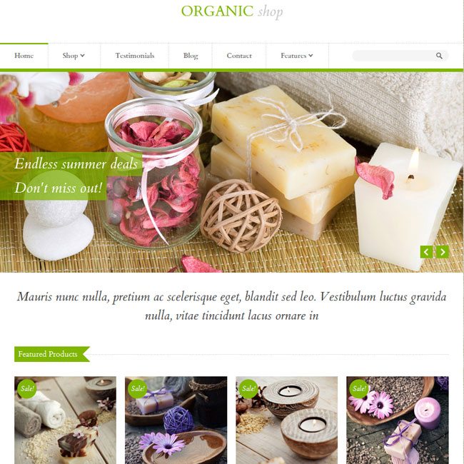 Organic Shop - Top eCommerce Wordpress Theme