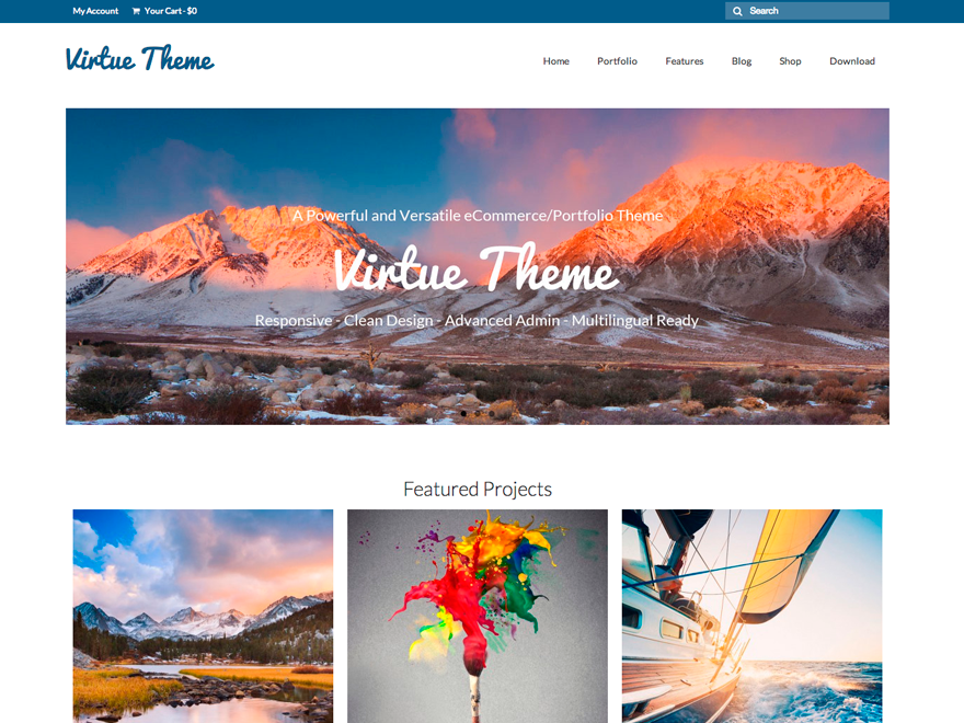 Top eCommerce Wordpress Theme
