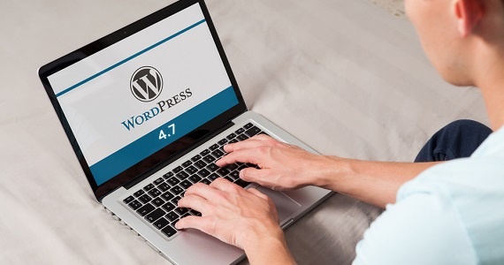 How to Fix Bug When Update SW Themes to WordPress 4.7